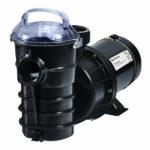 dynamo-con-switch-pump-1hp-115v-pentair